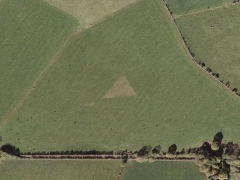 Crop circle : triangle (Crop circle)