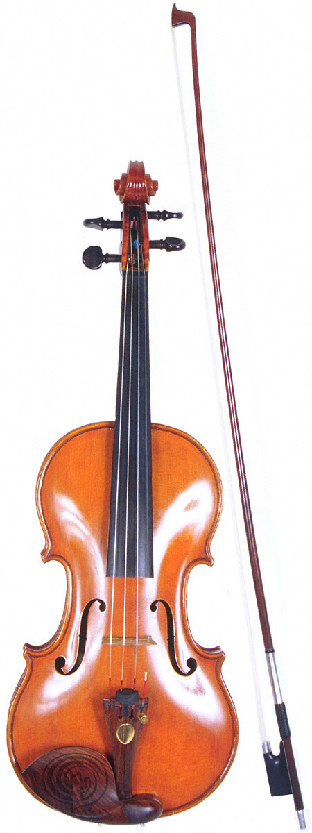 Violin (Giant) - similarity image