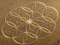 Indian Arrow crop circle (Crop circle) - similarity