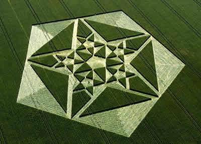 Avebury Crop Circle Crop