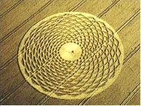 Google Heart crop circle (Crop circle) - similarity