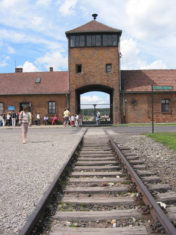 Auschwitz (War) - similarity image