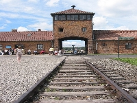 Auschwitz (War) - similarity