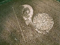 Bubble crop (Crop circle) - similarity