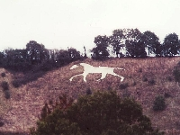 New Devizes White Horse (Art) - similarity