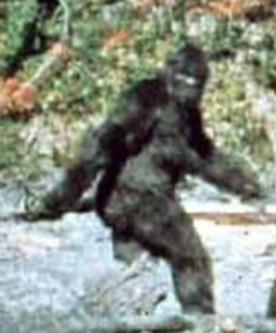 Big foot (Record) - similarity image