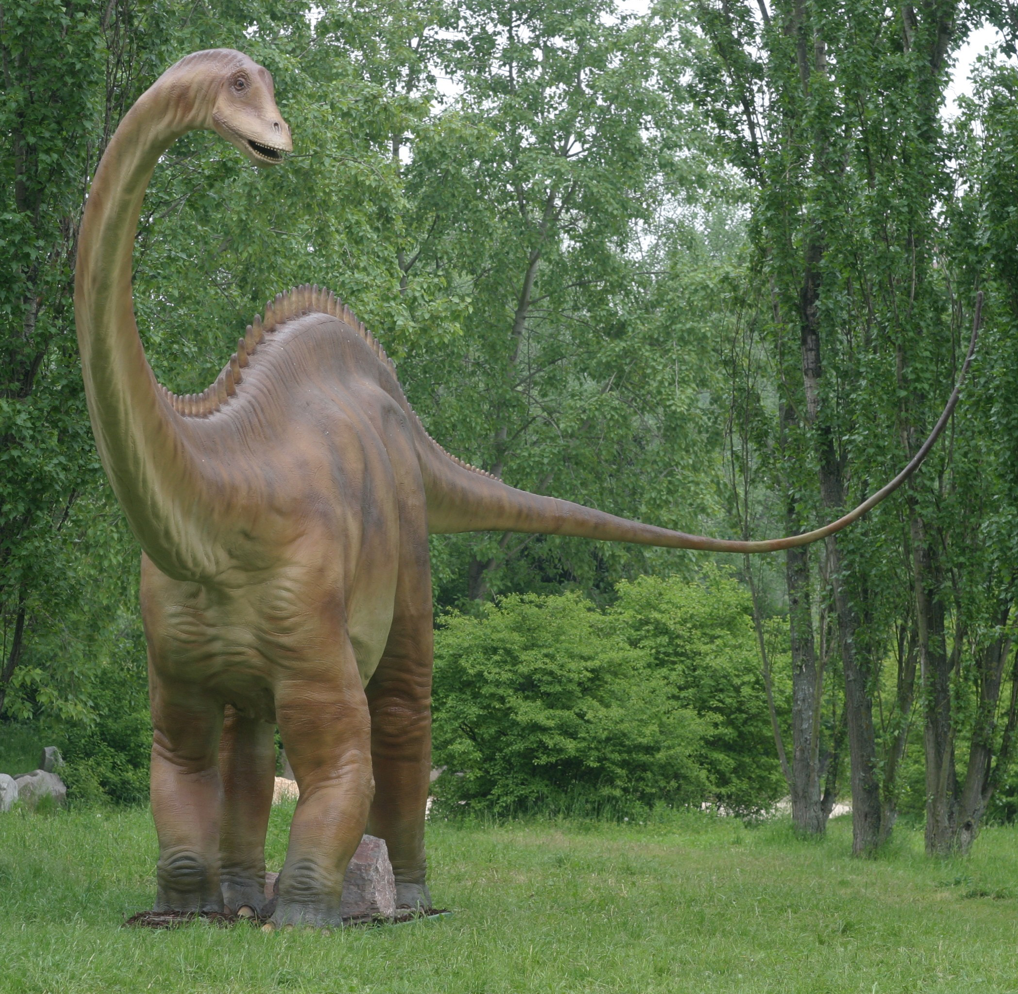 Hypotheses about the causes of dinosaur extinction
