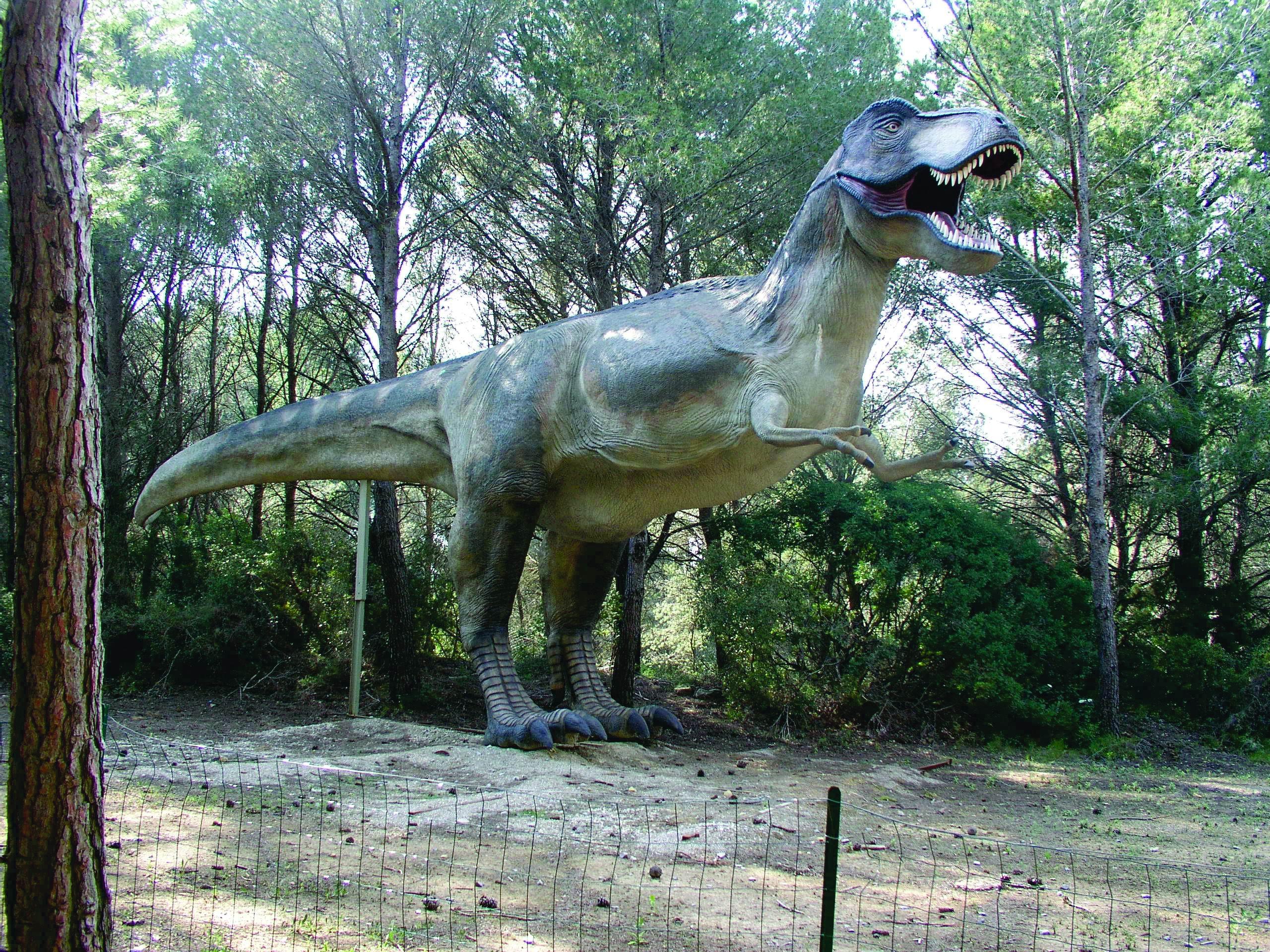 3 Dinosaurs Animals Strange Google Earth Maps